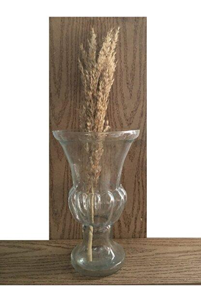 GLASSY Coco Vazo 25 Cm Yüksekliğinde