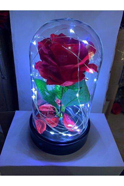 Aleyna'nın Dükkanı Ledli Kırmızı Gül Işıklı Mika Cam Fanus 22 cm