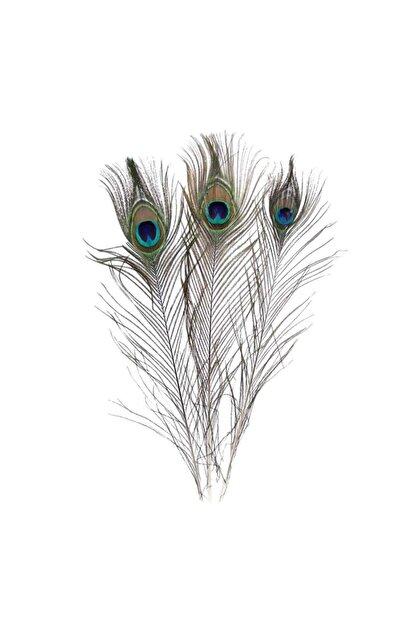 Eminonutoptanci Gerçek Tavus Kuşu Tüyü 20-30 cm 10 Adet