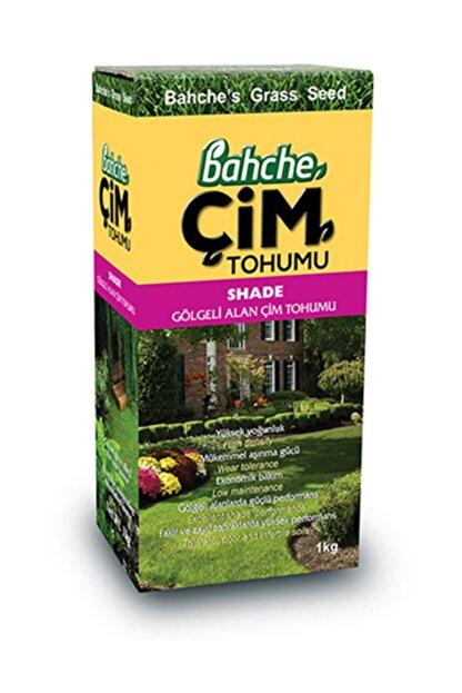 Bahche Ithal  Gölgeli Alan Çim Tohumu 1 kg