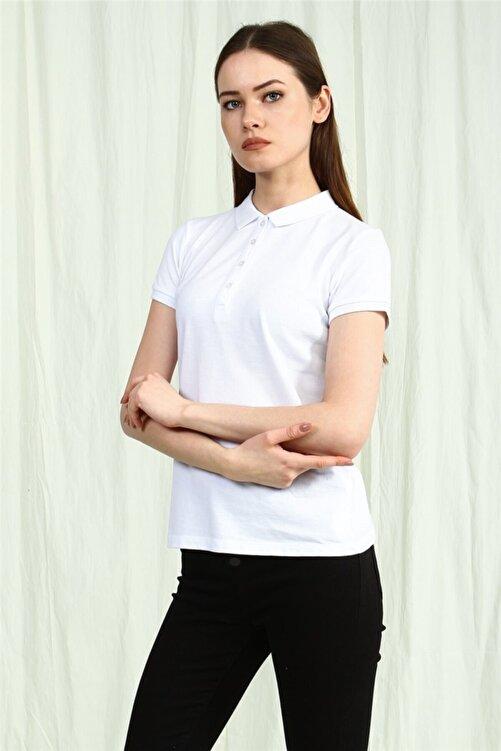 YÜCEL TİCARET Kadın  Beyaz Polo Yaka Kısa Kollu Basic Tshirt 2