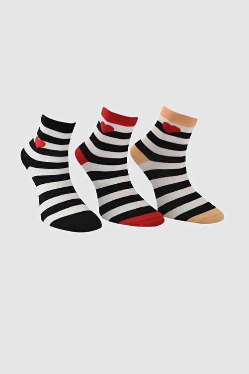 TRENDYOLMİLLA Siyah 3'lü Paket Nakışlı Örme Çorap TWOAW21CO0046 2
