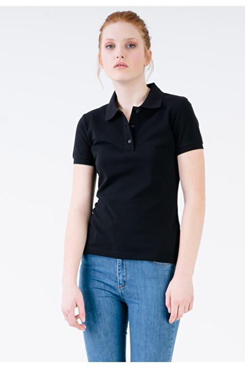 JAHR MARC Kadın Siyah Slim Fit Polo Yaka Yırtmaç Detaylı T-shirt 1