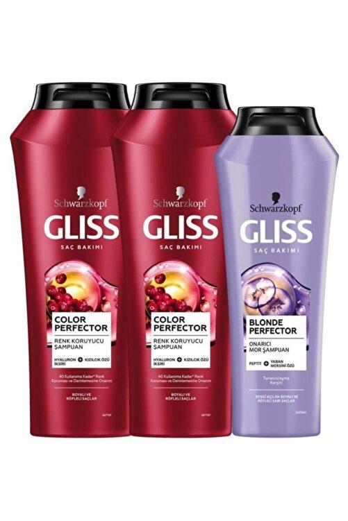 Gliss Color Perfector Renk Koruyucu Şampuan 500 ml X 2 Adet + Blonde Perfector Şampuan 250 ml 1