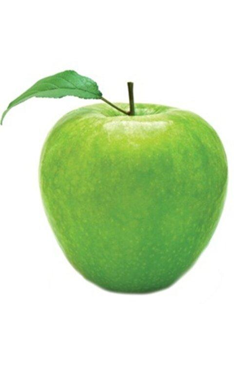 Uzun Botanik Elma Fidanı (granny Smith) 160 cm Tüplü (topraklı) 2 Yaşında - Aşılı Ağaç Fidanı 2