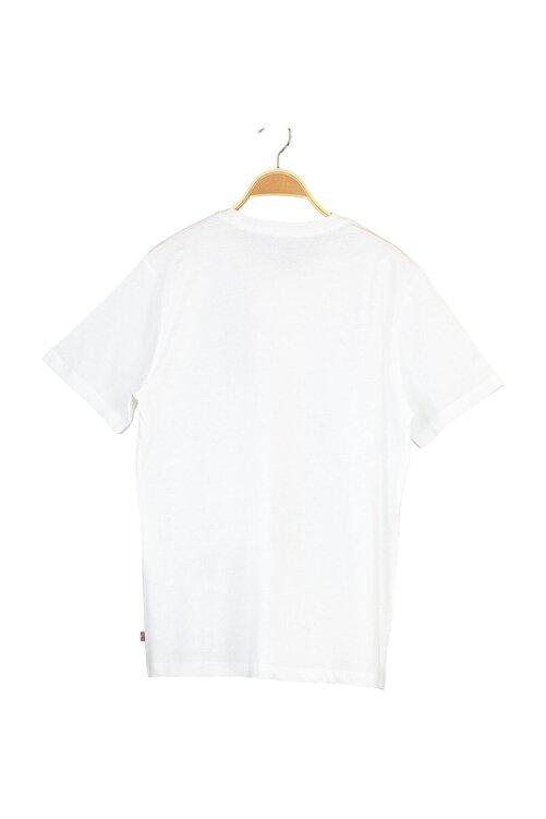 Levi's Erkek Housemark Graphıc Tee Lse_Ssnl Mv Frog T-Shirt 22489-0392 2
