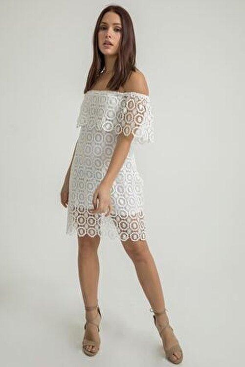BY H Madonna Yaka Dantel Elbise-beyaz 1