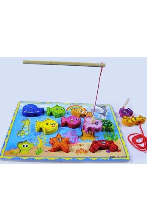 Ahşap Mıknatıslı Balık Tutma ve Ipe Dizme Oyunu 2
