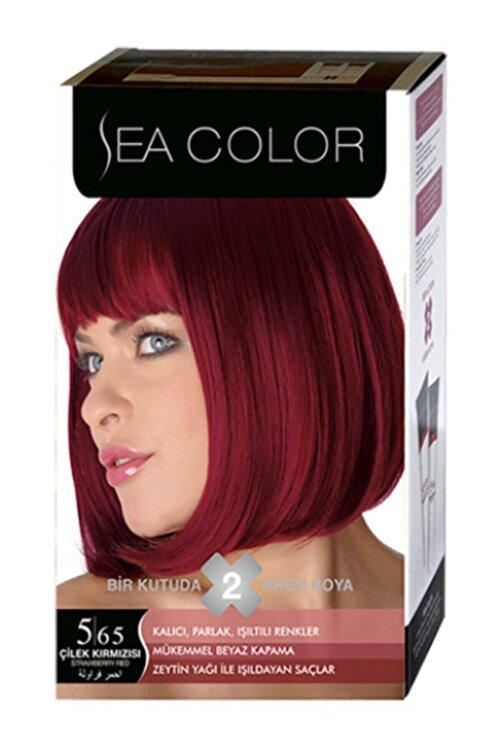 Sea Color Çilek Kırmızısı Set Boya 5.65 1