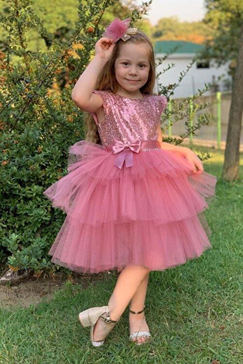 aden kids Kız Çocuk Pembe Pul Payetli Tüllü Elbise 3 Yaş Kız Çocuk Abiye 1