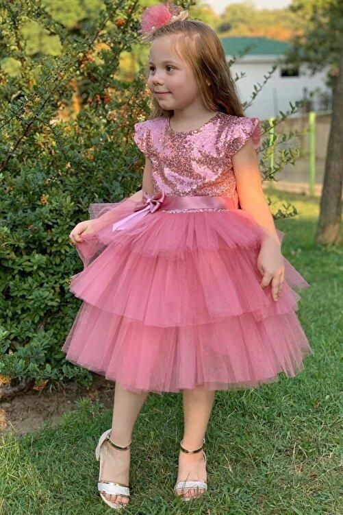 aden kids Kız Çocuk Pembe Pul Payetli Tüllü Elbise 3 Yaş Kız Çocuk Abiye 2