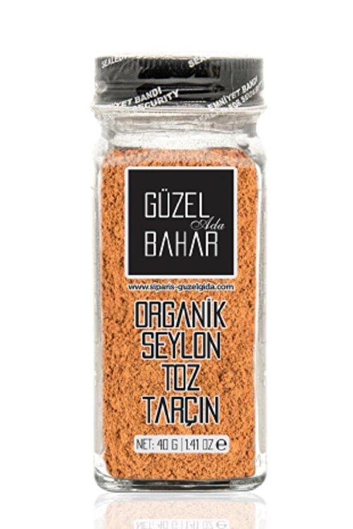 Güzel Gıda Organik Seylon Toz Tarçın 40 gr 1
