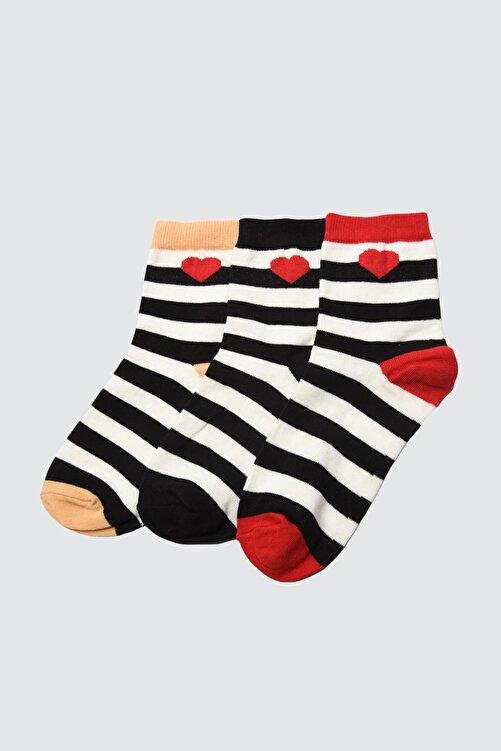 TRENDYOLMİLLA Siyah 3'lü Paket Nakışlı Örme Çorap TWOAW21CO0046 1