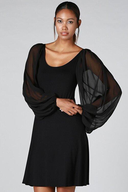 Quincey Kolu Tül Detay Elbise 2