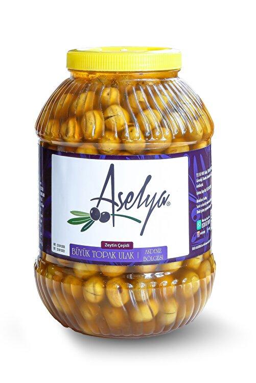 ASELYA - Adana - Seyhan, Büyük Topak Ulak Kırma Yeni Hasat Yeşil Zeytin Bidon 5 Kg /net 3kg 1