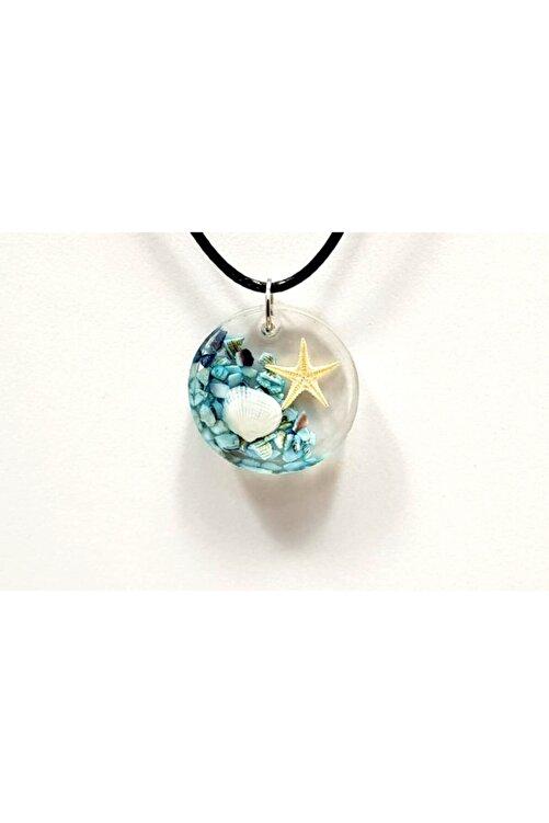 PR Yaşayan Yuvarlak Gerçek Deniz Kabuğu , Deniz Yıldızlı Mavi Kolye 1