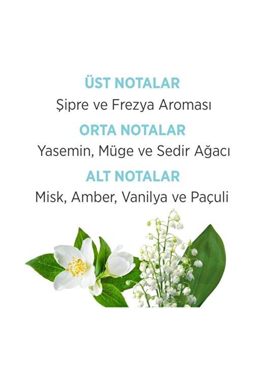 Emotion Ocean Fresh Edt 50 ml Parfüm + 150 ml Deodorant + Çanta Seti 8690586016483.c 2