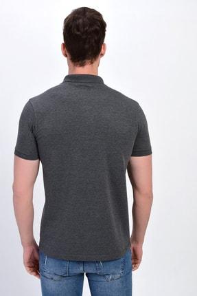 Dynamo Erkek Antrasit Polo Yaka Likralı T-shirt T621 4