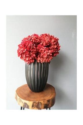 Kuru Çiçek Deposu Solmayan Gerçek Ortanca Buketi Kırmızı 4-5 Adet , Kuru Çiçek 2