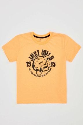 Defacto Erkek Çocuk Kaplan Baskılı Kısa Kol Tişört 0