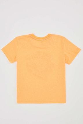 Defacto Erkek Çocuk Kaplan Baskılı Kısa Kol Tişört 1