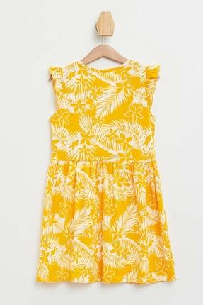 Defacto Baskılı Fırfır Detaylı Örme Elbise 1