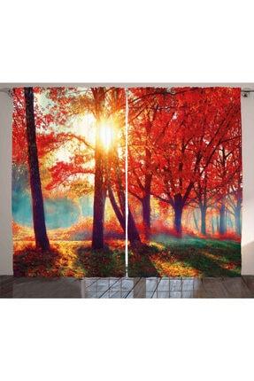 Orange Venue Doğa Perde Kırmızı Ağaç Ve Güneş 0