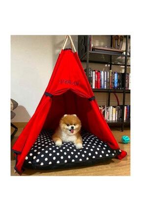 Teepee House Yataklı Köpek Çadırı (70-70 cm) 2