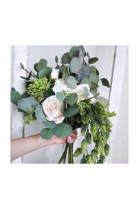 Nettenevime Yapay Çiçek Sarkan Yeşil Bitki Pudralı Başak Doğal Çiçek Dekoru 60 cm 3