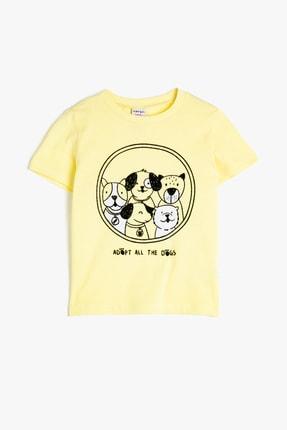 Koton Sarı Erkek Bebek T-Shirt 0