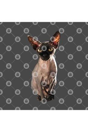 TatFast Sphynx Cat Kupa 2