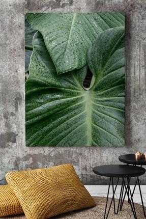 KanvasSepeti Kalın Yapraklı Art Vektörel Soyut Kanvas Canvas Tablo Dekoratif Tablolar 0