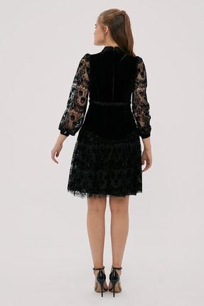 Kayra Kadın Siyah Hakim Yaka Dantelli Elbise  B20 23024 4