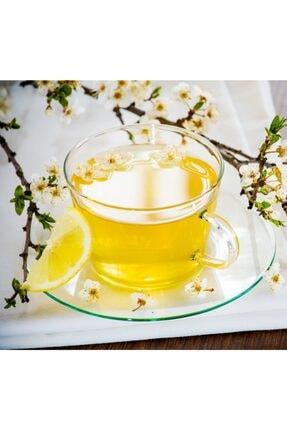 Beta Tea Zencefil Limon Çayı 20x2 Gr - Beta Herbtea Collection 1