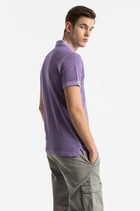 Ltb Erkek  Mor Polo Yaka T-Shirt 012208454160890000 3