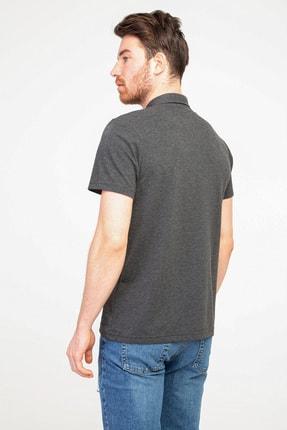 Kiğılı Polo Yaka Regular Fit Tişört 2