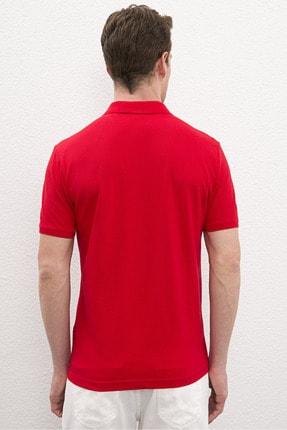 US Polo Assn Kırmızı Erkek T-Shirt 2