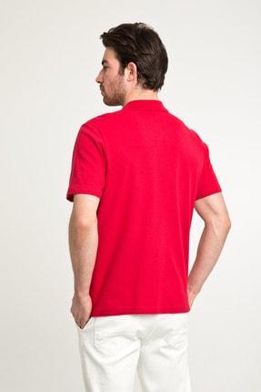 Kiğılı Erkek Kırmızı Düz Kesim Polo Yaka T-Shirt - Cdc01 3