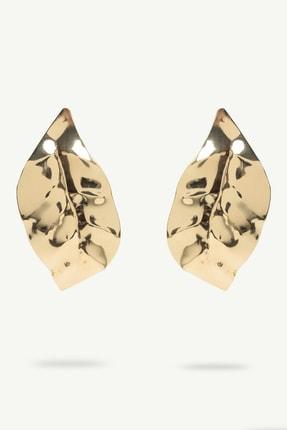 Yargıcı Kadın Altın Yaprak Desenli Küpe 0YKBJ8194X 0