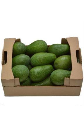 Doğal Burda Avakado Bahçemiz Avokado Bahçemizden 5'li Fırsat Paketi 0