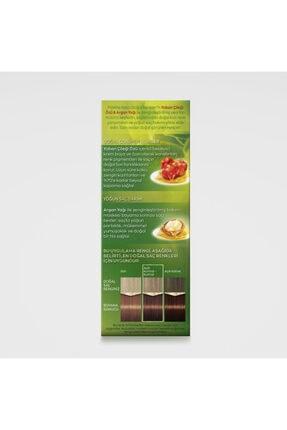 Palette Kalıcı Doğal Renkler 6-68 Bronz Çikolata 3