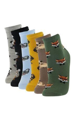 Defacto Erkek Çocuk Kutulu Pug Desenli 6'lı Soket Çorap 1