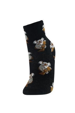 Defacto Erkek Çocuk Kutulu Pug Desenli 6'lı Soket Çorap 4