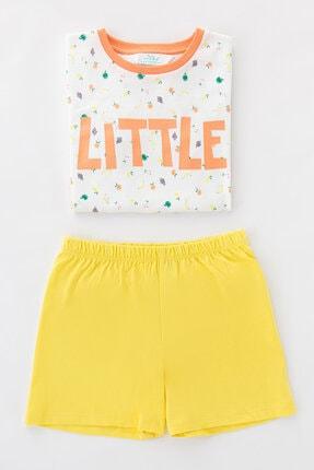 Penti Çok Renkli Kız Çocuk Little Fruits Ss 4Lu Pijama Takımı 2