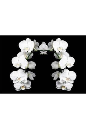 Kleid 2 Parça,yağ Sıçratmaz Ocak Arkası Koruyucu, Beyaz Orkide (60CM X 52CM) 4'lü Ocaklar 3