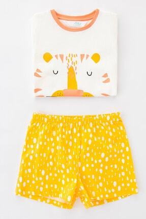 Penti Çok Renkli Kız Çocuk Savannah Friends Ss 4Lu Pijama Takımı 1