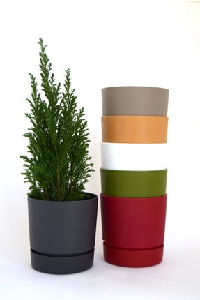 leogarden Begonya Tasarım Antrasit Renkli 1.8 Lt Akıllı Saksı 0