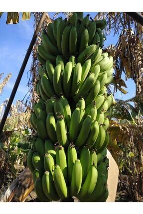 Alanya Özlem Avokado (1kg) ,limon (2kg) ,muz (2kg) Taptaze Ürünler 1