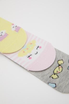 Defacto Kız Çocuk Desenli  Babet Çorap 3'lü 1