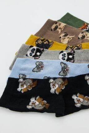 Defacto Erkek Çocuk Kutulu Pug Desenli 6'lı Soket Çorap 2